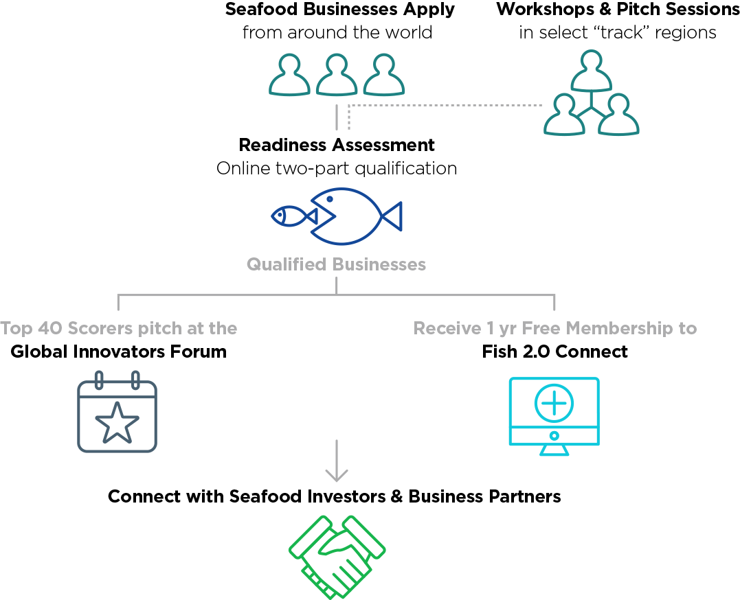 Diagram of the Fish 2.0 process for businesses
