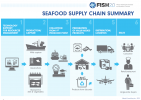 Seafood Supply Chain Graphic